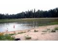 В парке Чехова ограбили отдыхающих