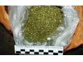 Иловайск не Амстердам, торговля марихуаной противозаконна